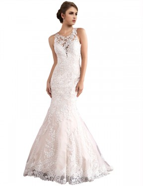 Cheap Ivory & Champagne Mermaid Illusion Cathedral Train Sleeveless Tulle Wedding Dress Sydney